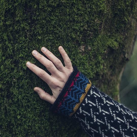 hand in a tree
